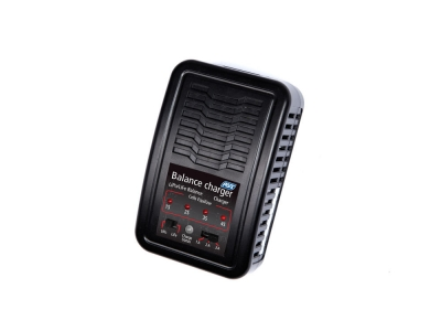 ASG LiPo/LiFe Auto Stop Battery Charger (UK Version)
